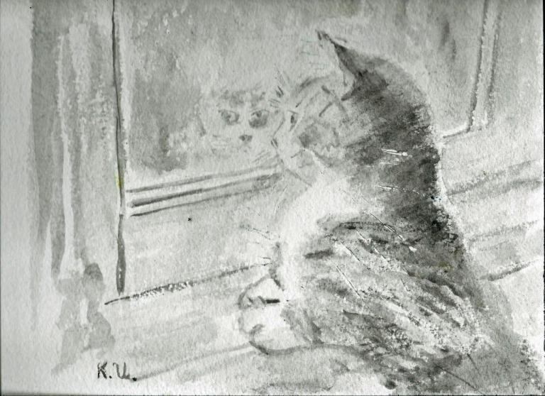 Petit chat à la fenête