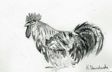 Année du coq
