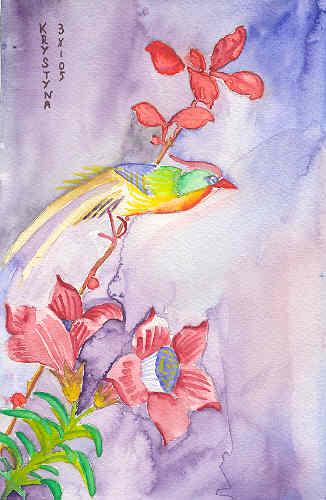 Colibri, par Krystyna Umiastowska
