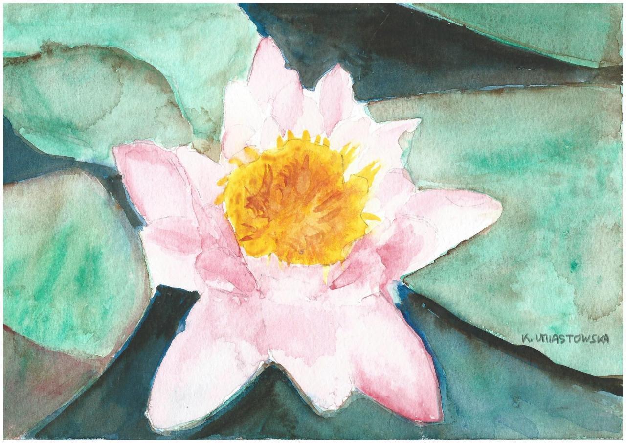 Fleur de lotus, par Krystyna Umiastowska