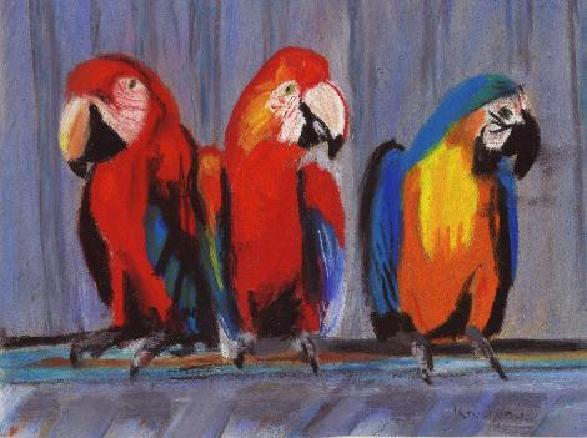 Oiseaux des îles, par Krystyna Umiastowska